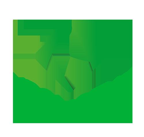 kronozys